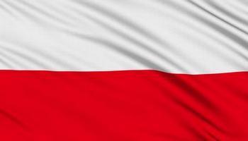Флаг королевства Богемии.