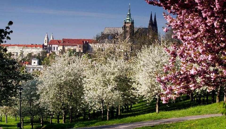 Прага весной - Пражские сады