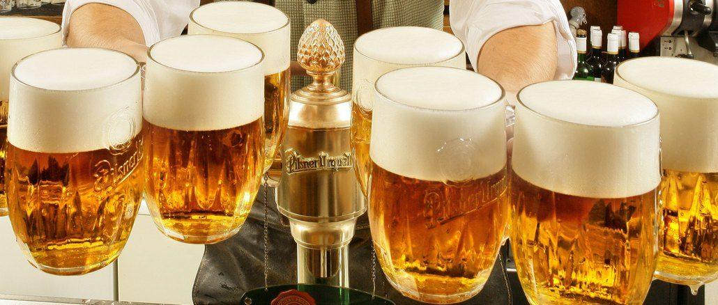 Чешское пиво и пивные традиции Чехии