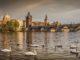 Прага, лебеди на Влтаве и Карлов мост.