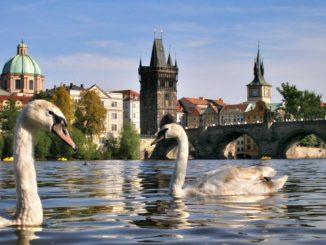 Прага - город на Влтаве.