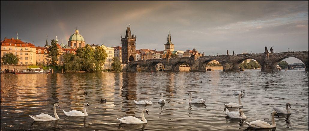 Прага - Лебеди на Влтаве